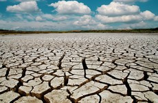 "Met Éireann says there was an ""absolute drought"" in Tipperary last month"