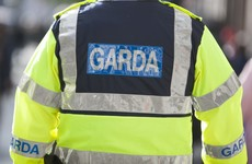 Garda feared infectious disease after being bitten by 'agitated and aggressive' drug user