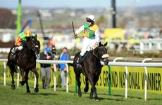 It's better than sticking a pin in the paper - let our foolproof* quiz pick your Grand National horse