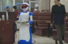 Robot waiters did such a terrible job they forced two restaurants to close