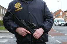 Gardaí say they'd 'run around like headless chickens' in the event of a terrorist attack