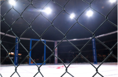 Sport Ireland vows to work with Government to regulate MMA in Ireland