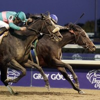 A Bluffer's Guide to... Breeders' Cup Weekend