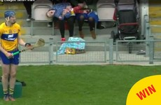 The cameras at the hurling in Thurles caught an excellent parenting moment