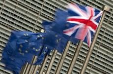 New campaign urges Irish people to vote in Brexit referendum