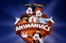 How Well Do You Remember The Animaniacs Song?