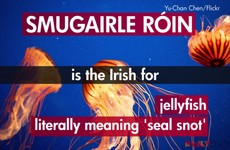 8 Irish words and phrases that English just can't match