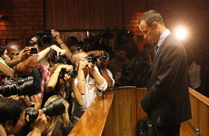 Pistorius family condemn claim he beat Reeva Steenkamp with cricket bat