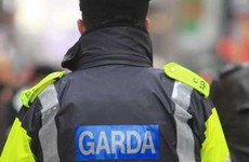 Shots fired at two Meath homes last night
