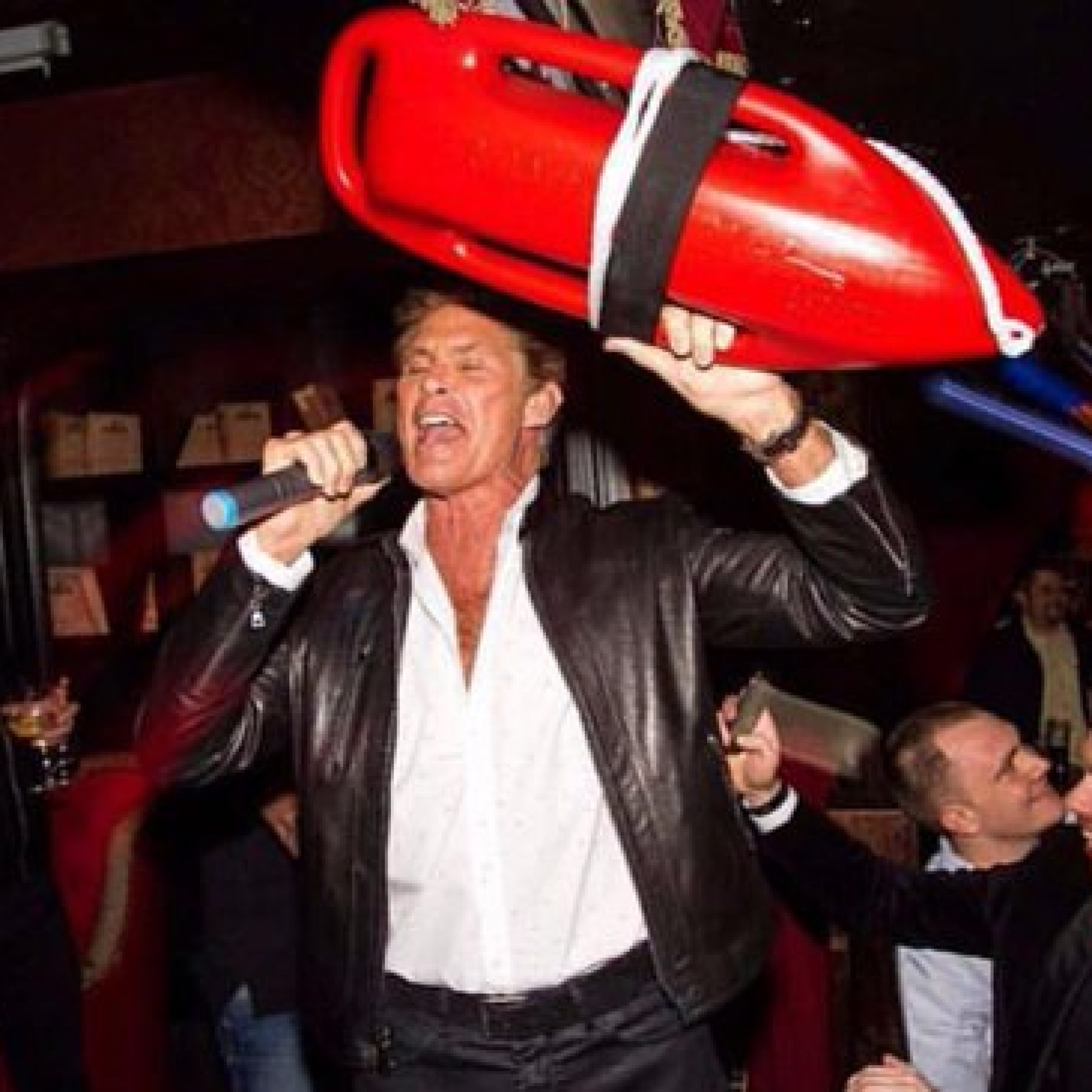 The Hoff belted out the Baywatch theme in a Dublin club last night