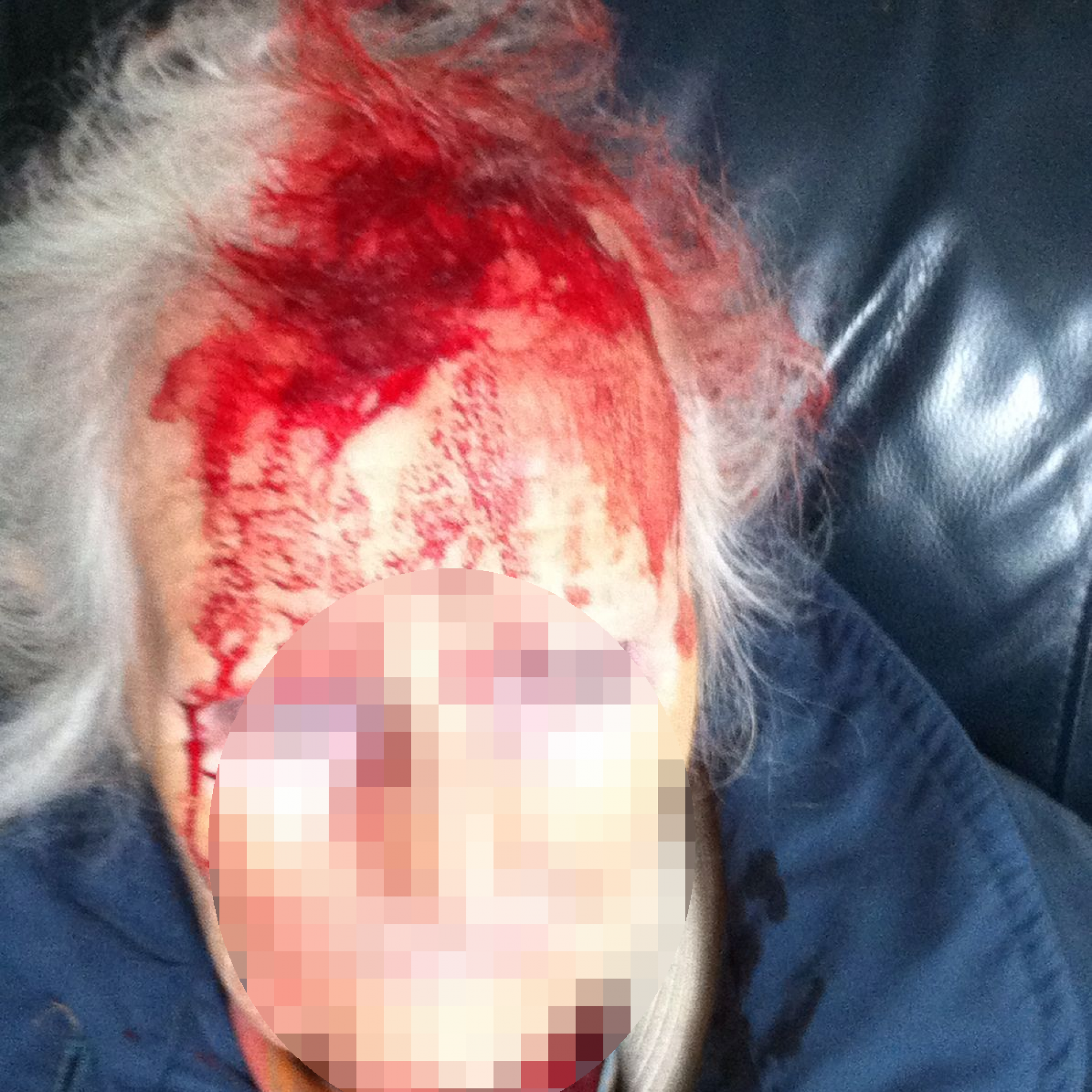 Appeal after woman in her 90s struck on head with a stick in handbag robbery