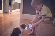 This little boy tried to train his puppy by making him watch YouTube videos