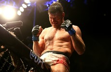 After 25 fights over 10 years in the UFC, Michael Bisping finally gets a title shot