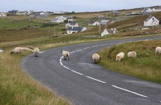 13 tweets that perfectly illustrate Irish country roads