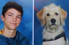 This service dog got an adorable yearbook photo right next to his human