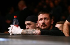 Governing body for MMA could take 5 years as Ireland aims to replicate Swedish model