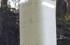 A little girl in Wicklow has stuck up an adorable sign to find her missing Barbie shoe