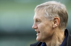 Joe Schmidt rejects notion he is picking Ireland players on reputation