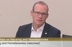 Coveney to miss 100-day housing plan deadline as 'people are not focused on work in August'