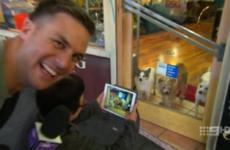 Australia's The Footy Show sorry for 'racist' dog joke