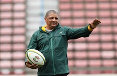 'Ireland weren't interested in playing,' says Springboks coach Coetzee