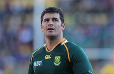 Springboks call up experienced out-half Steyn after Lambie's injury