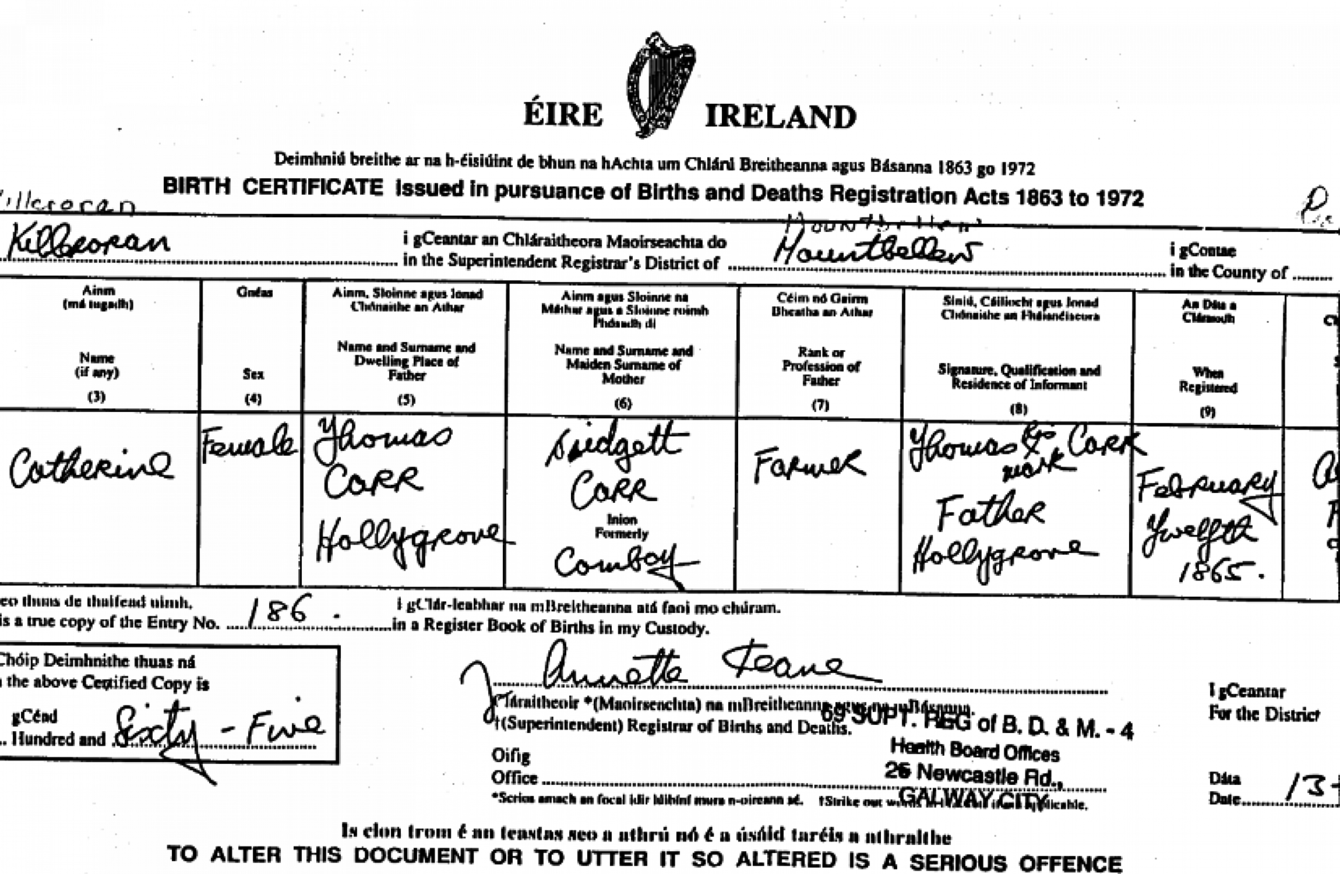 80 rise in applications for irish birth certificates from uk the passport service has also reported an increase in queries about entitlements to irish passports aiddatafo Image collections