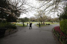 Gardaí investigating sexual assault of woman at Stephen's Green last night