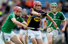 Limerick book All-Ireland minor semi-final place with win over Wexford