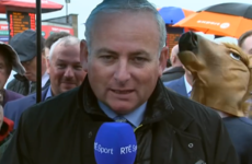 This messer was caught horsing around behind an RTÉ report from the Galway Races