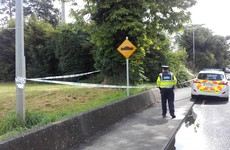 Gardaí appeal for witnesses after alleged sexual assault in early hours of morning