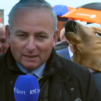 This messer was caught horsing around behind an RT� report from the Galway Races