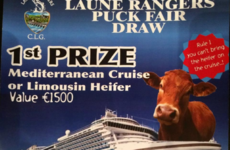 This Kerry GAA club's puck fair draw poses the ultimate dilemma