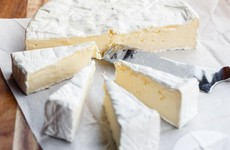 Divers find 340-year-old brie off the coast of Sweden that 'smells of life'