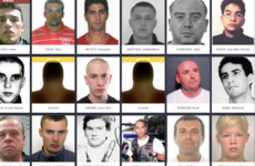 14 of Europe's most-wanted criminals have been arrested this year