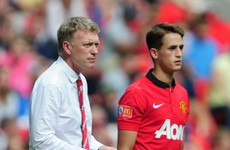 David Moyes confirms interest in United pair Januzaj and Fellaini