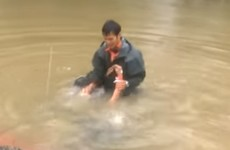 Dramatic footage shows woman and dog being pulled from a sinking car in Louisiana floods