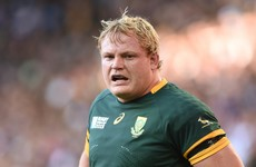 Last-gasp Whiteley try gives Boks victory in thriller against Pumas