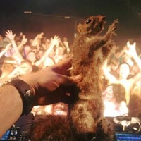 This Dublin DJ�s gas nightclub story is going viral on Facebook