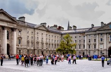'The Cinderella sector' of Irish education needs extra funding just as badly as our top universities