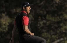 In the swing: Tiger proves that he never forgot how to get the job done