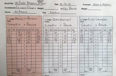 The official scorecards for GGG-Brook were pretty tight when the fight was stopped