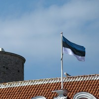 Google's Irish boss thinks government departments need to be more like Estonia