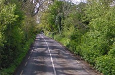 Man in his early 20s dies after car hits ditch in Limerick