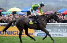 Watch: Denman the Destroyer's greatest moment