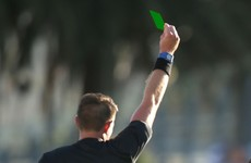 History made in Italy as Serie B ref awards first-ever green card