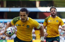 Wallabies star to make European debut for Leicester in Glasgow clash