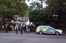 Zoo visitors locked down in café as gorilla escapes enclosure