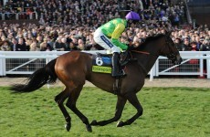 Nicholls: Kauto and Master Minded set for King George showdown