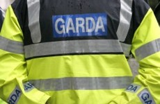 Court hears garda found gun at end of trail from murder accused's home